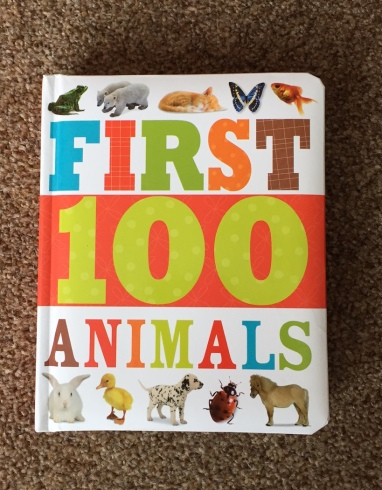 First 100 Animals book cover - title in bold letters and different colours and a frog, polar bear, kitten, butterfly, goldfish, rabbit, duck, dalmatian puppy, ladybird and shetland pony are all pictured along the top and bottom of the cover