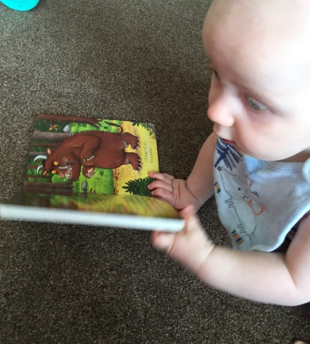 TM (almost bald 8 month old baby wearing just a bib and nappy) looking away past the book but holding it open onto a page where you can see the gruffalo standing in a wood