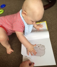 TM (almost bald 8 month old baby wearing a red stripey vest and blue stripe bib) opening a flap on a different page of the dear zoo book to reveal an elephant. my hand is also on the book and I am wearing red nail varnish