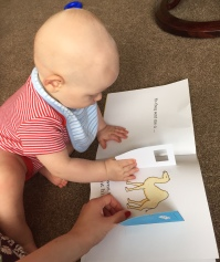 TM (an almost bald 8 month old baby wearing a red stripe vest and a blue stripe bib) opening the flaps on a page of the Dear Zoo book to reveal a camel. My hand is also on the book and I am wearing red nail varnish.