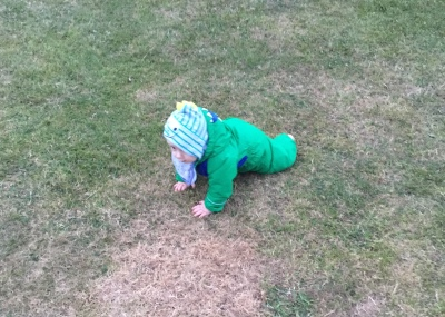 TM (9 month old baby) on a patch of grass. He's wearing a bright green puddle suit and is on his hands and knees crawling, he's got a stripy grey and green hood with a dinosaur face and horns.