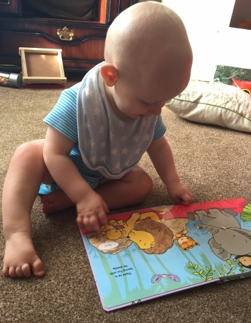 almost bald 9 month old baby (wearing a bright blue and white stripey vest and a pale blue bib with white stars) sat on a beige carpet reading an open book with a lion and elephant on the pages.