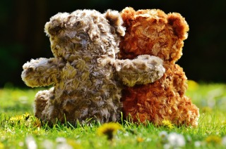 two teddy bears sat on the grass. We can just see them from behind. One is orangey-brown fur and the other is grey-brown fur. The one with grey fur has its arm around the orange one!