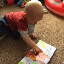 TM (10 month old almost bald baby wearing red and grey top, blue bib, blue jeans) crouching on a beige carpetted floor with his hands on the open page of That's Not my Squirrel book stroking the furry cheek of the brown/red squirrel