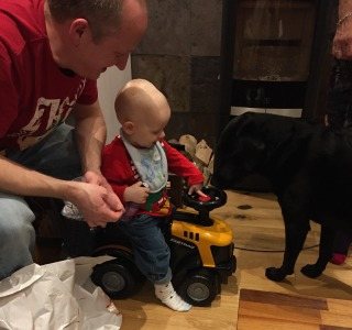Almost bald, blond 1 year old sat on a yellow and black toy JCB tractor. He is wearing jeans and a red elf top with a blue bib. His dad is kneeling next to him in jeans and a red top and a black labrador is in front. There is wrapping paper on the floor